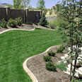 Residential and Commercial Turf Grass Services